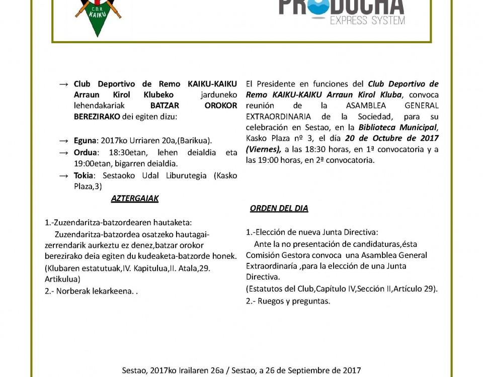 Cartel Asamblea Elección Directiva 2017